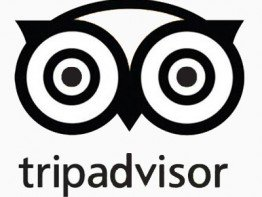Trip adviser logo