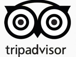 TripAdvisor-study-gives-insight-into-impact-of-reviews