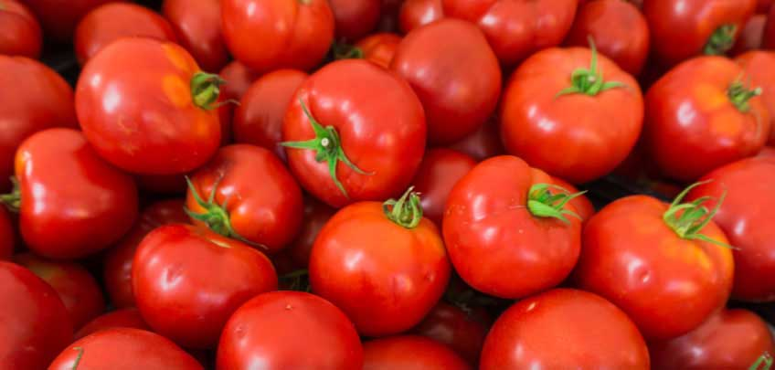 VITTORIA-GROUP-edinburghs-favourite-italians-since-1970-Mutti-Tomatoes